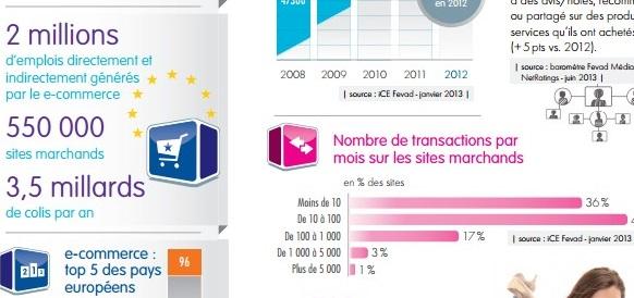 Chiffres e-commerce 2013