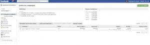Facebook Ads - Interface